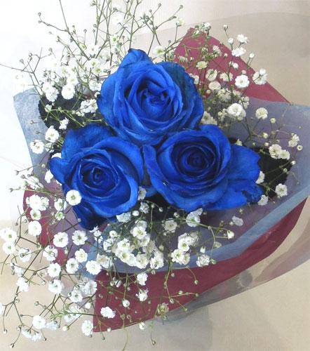 ブルーローズの花言葉:神の祝福 供え 喝采 奇跡 ブルーローズ 青いバラ 花 誕生日 3本 送料無料/新品 カスミソウ花束