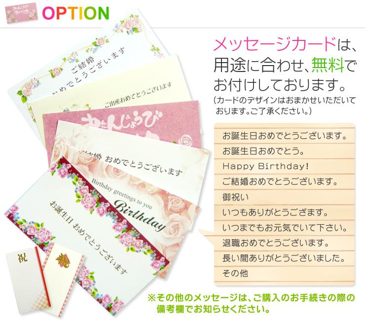 観葉植物パキラ7号あす楽【開店祝い】【新築祝い】【誕生日】【退職祝い】