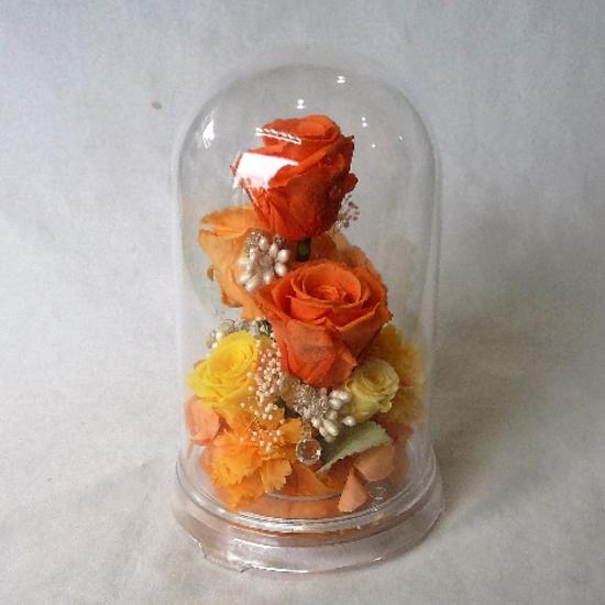 プリザーブドフラワー/ドームフラワーLL オレンジ【プリザーブドフラワー ドーム】【送料無料】