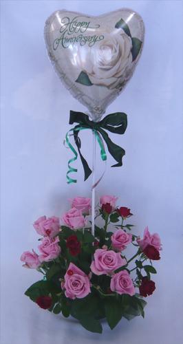 【バルーンフラワー】アニバーサリー・ピンクローズのアレンジメント/送料無料【記念日の花】【結婚記念日】【御祝い】