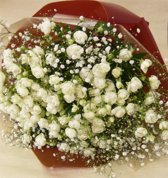 バラの花束/ウィット&カスミ草