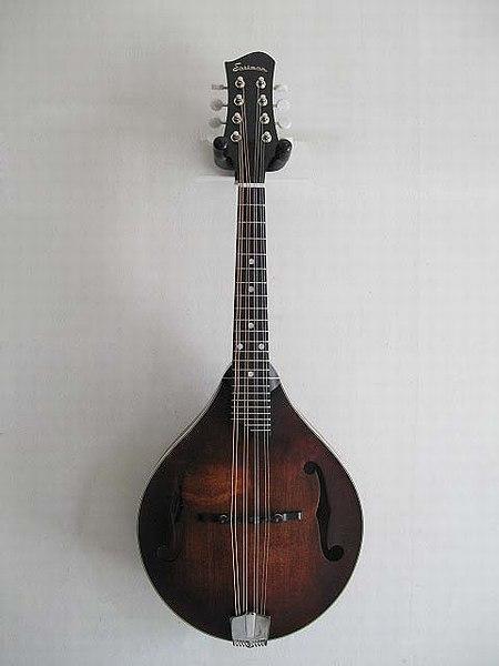 【日本製】 送料無料 ) MD-505・ハードケース付!Eastman Guitars イーストマンギターズ/ Guitars MD-505 ( F-Hole ) A-Style models フラットマンドリン【smtb-tk】, 質屋 大黒屋:ea0b9f92 --- scottwallace.com