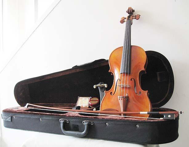 送料無料!初心者バイオリンSet・単板削り出しにより優れた音響を実現!Carlogiordano・カルロジョルダーノ/VS-2・1/2サイズ【smtb-tk】