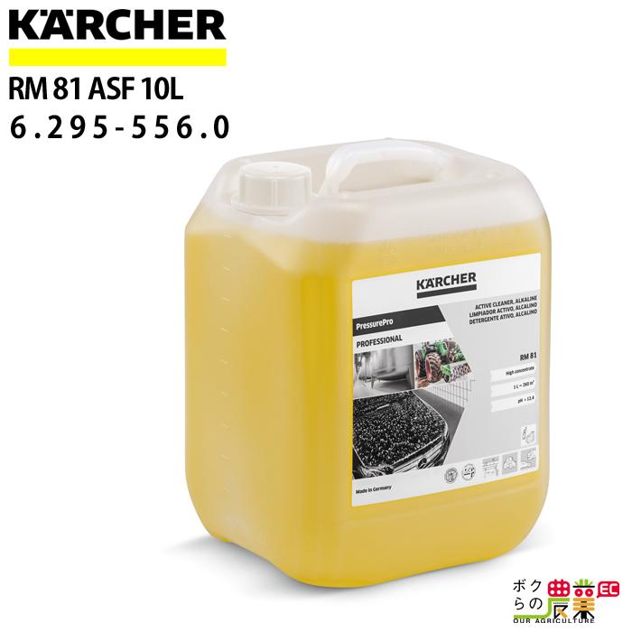 ケルヒャー ディープクリーナー RM 81 ASF 容量10L 6.295-556.0