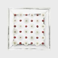 【マラソン期間¥100-2000クーポン】立体図鑑 Sola cube サイドテーブル Side Table Checkerboard Silver