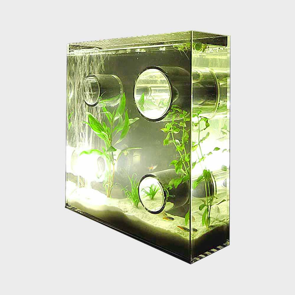 【4/22-|¥100-2000クーポン】アクアリウム 水槽/private agualium/標準サイズ [アクアリウム 水槽/インテリアはプライベートアクアリウム]