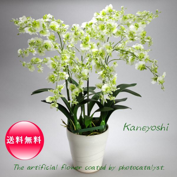 お祝い 造花 フラワーギフト 光触媒オンシジューム 6本立 ホワイトグリーン