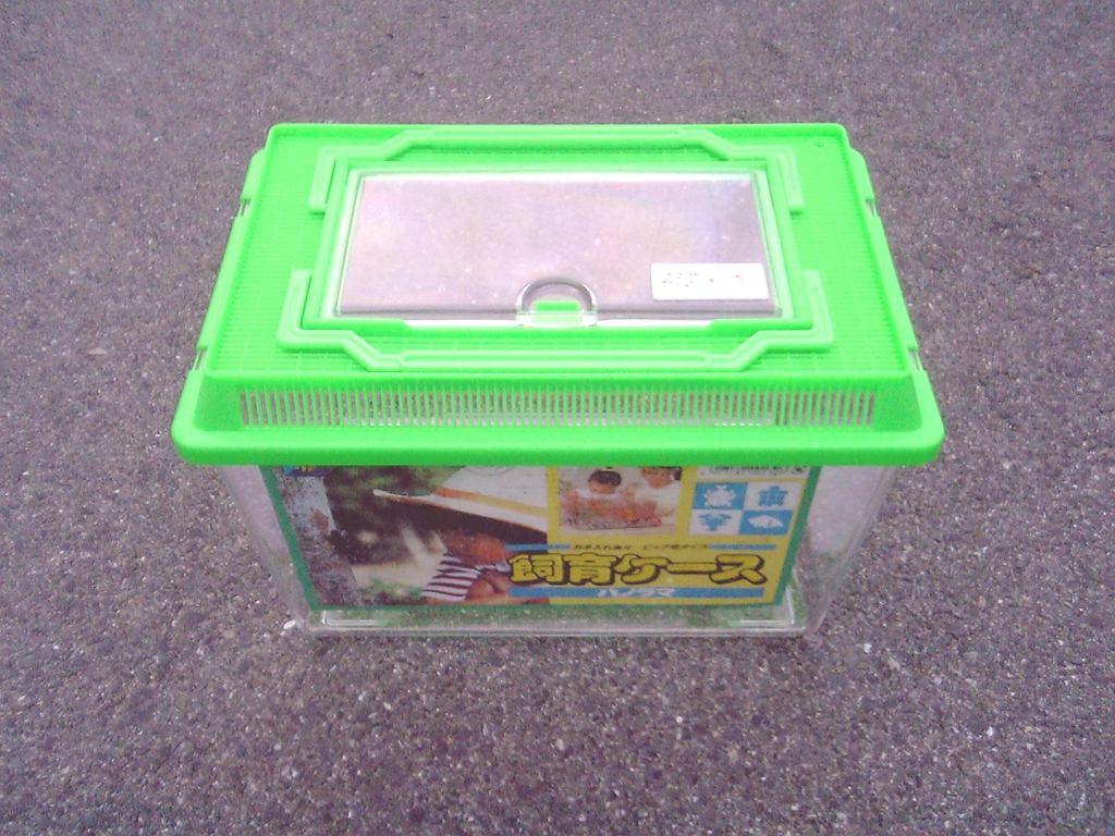 パノラマ飼育ケース大 (プラケース大型) 新品6個セット