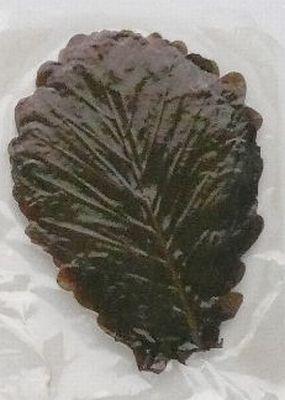 ■ 柏葉 (柏の葉) (茶・ちゃ) 50枚■【和菓子材料】