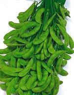 SALE開催中 茶豆風味で3粒莢率の高い白毛早生枝豆 枝豆種子 輸入 サカタのタネ おつな姫 枝豆 1L