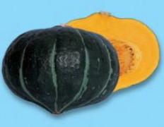 かぼちゃ種子 渡辺採種場 ほっとけ栗たん 500粒