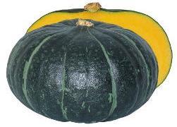 省力 多収 超激安特価 美味しく 作ってJoy かぼちゃ種子 ハイクオリティ ジェイ ジェジェJ 100粒 渡辺採種場