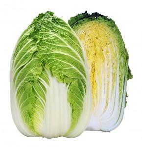 白菜種子 カネコ種苗 黄蒋 20ml