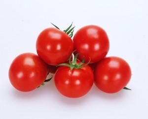 トマト種子 カネコ種苗 レッドホープ 1000粒