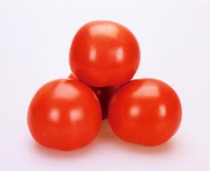トマト種子 カネコ種苗 SR彩福 1000粒