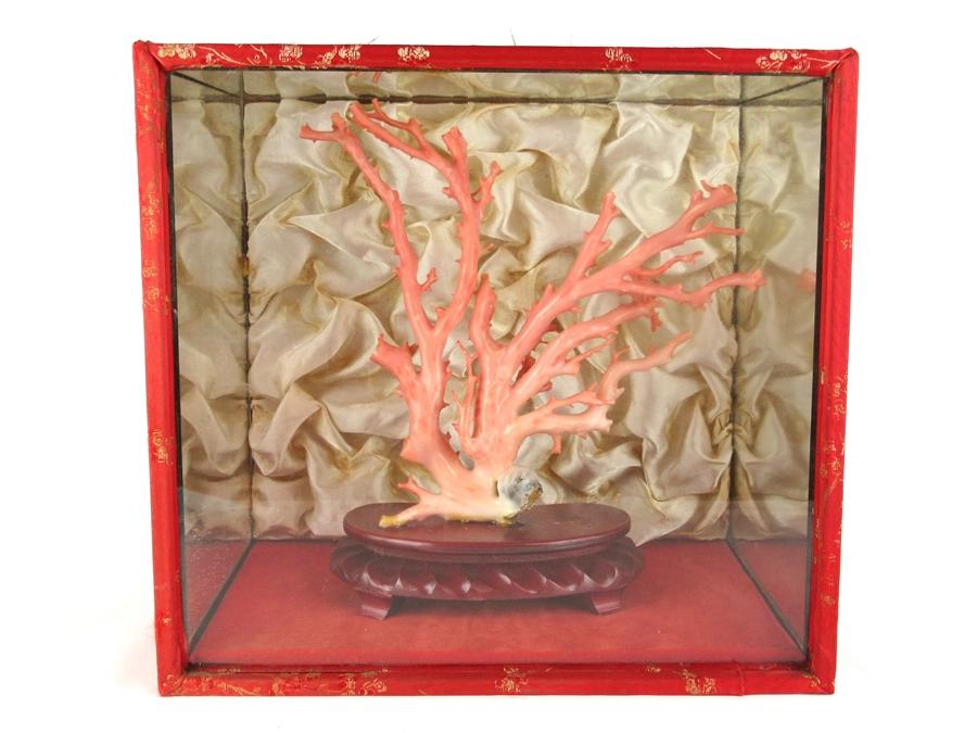 【中古】珊瑚 サンゴ 桃色珊瑚 ピンク 333.0グラム 置物 インテリア雑貨 台座・ケース付き【送料無料】【店頭受取対応商品】