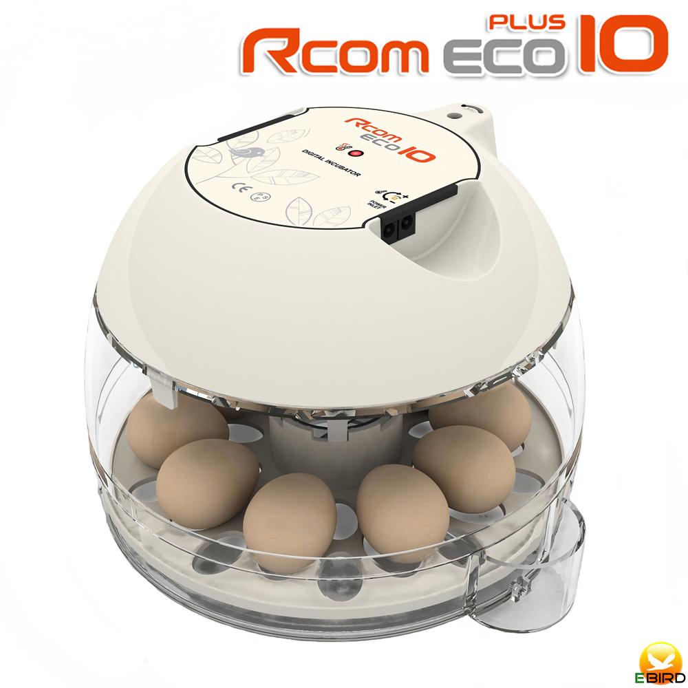 お手軽ふ卵器 優先配送 Rcomエコプラス10 新入荷 流行 手動転卵孵卵器