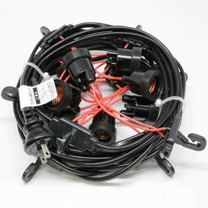 長谷川製作所 提灯コード ライトタイプ CCA220L20P10