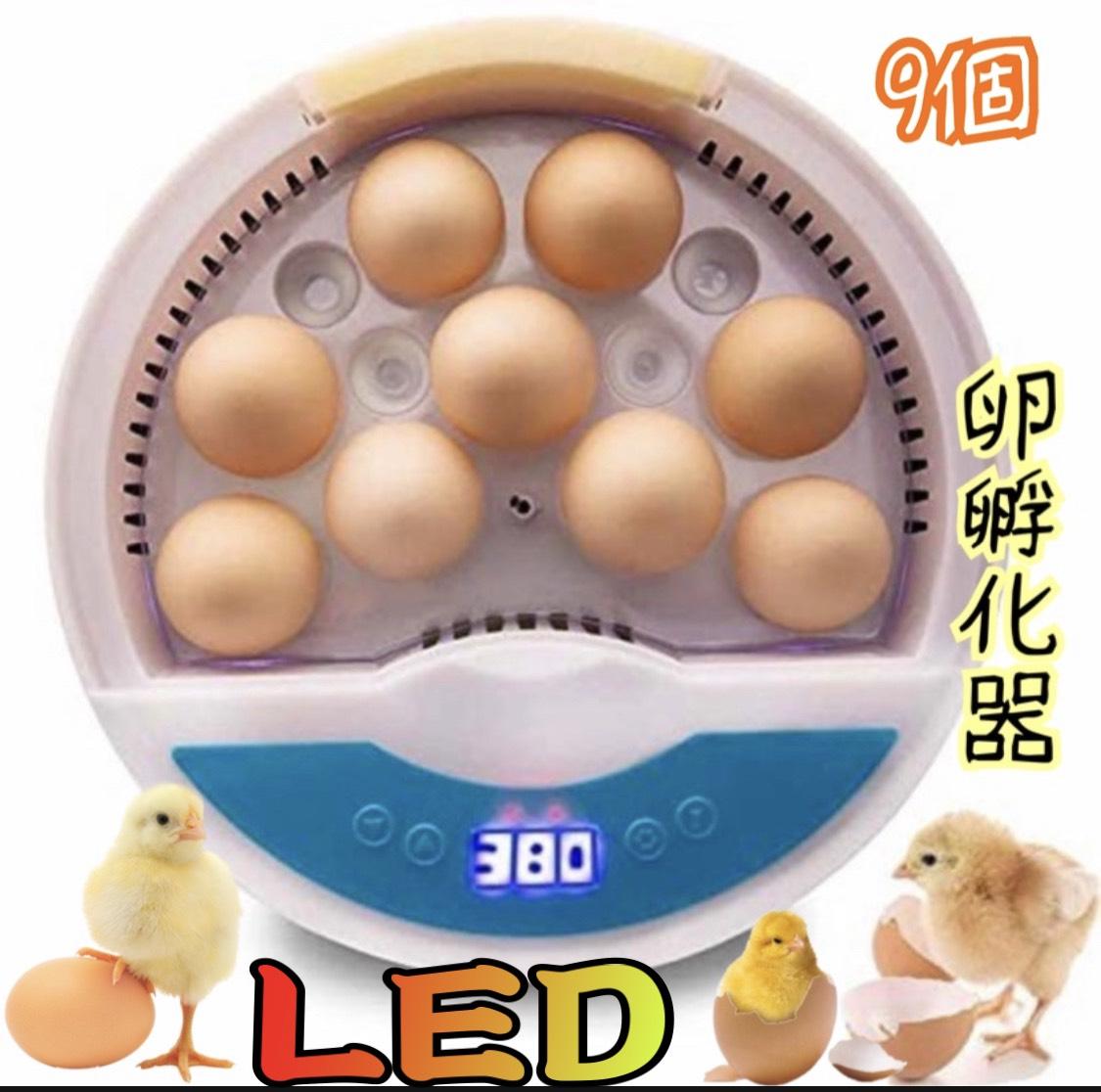 LED自動孵卵器 インキュベーター 検卵ライト内蔵 鳥類専用ふ卵器 子供教育用 感謝価格 9個 家庭用 販売期間 限定のお得なタイムセール 孵化器