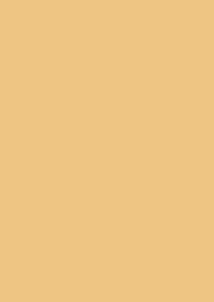日本製 綿100%の手拭い 生地が柔らかくごわごわしません 日本手ぬぐいだから柔らかい 江戸てん お得クーポン発行中 無地 新品 送料無料 手ぬぐい ベージュ もめん 綿100%