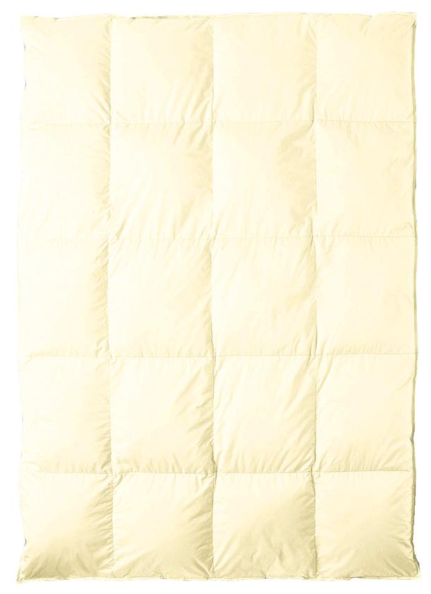 東京西川 NP7050 西川プレミアム 羽毛布団 高級ふとん ダブル KA27375031 肌掛けふとん nishikawa premium ジーリンホワイトグースダウン 日本製寝具 送料無料