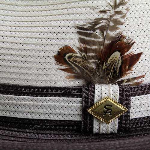 44bcdc3b ... Hats mens Hat STACY ADAMS turu Hat spring summer Stacy Adams mens Hat  natural / Brown ...