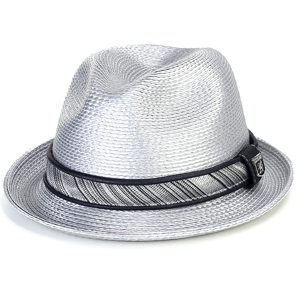 ... Size-rich   silver silver gray  fedora  that there is the STACY ADAMS  ... 3f262950a8b