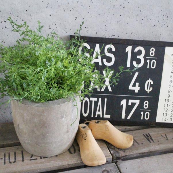 ドーム型のモフモフちゃん#9825; かわいすぎる そしてとっても優秀な子 いなざうるす屋 新発売 フェイクグリーン モフモフドーム 壁飾り 壁掛けインテリア 観葉植物 大人気 ウォールデコレーション 緑 プレゼント 模様替え イミテーショングリーン インテリア ギフト 癒し 一人暮らし 壁掛け 引越し 祝い