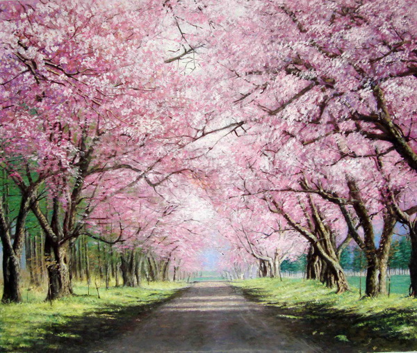 Oil Painting 20 Between Highway Cherry Blossom Tree