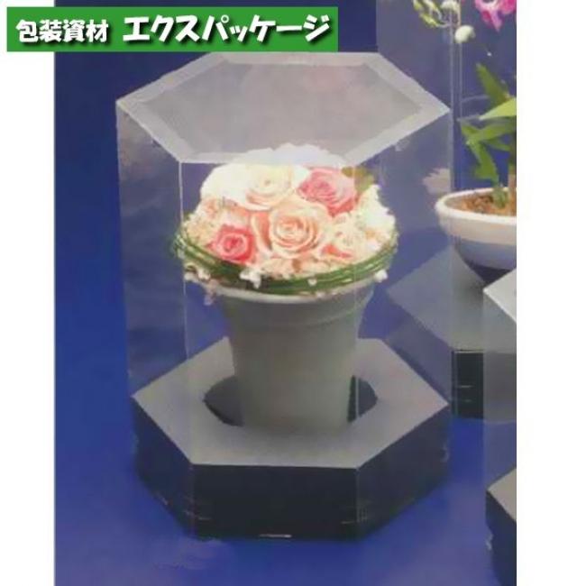 【大森】プリズムケース L-370 75入 【ケース販売】