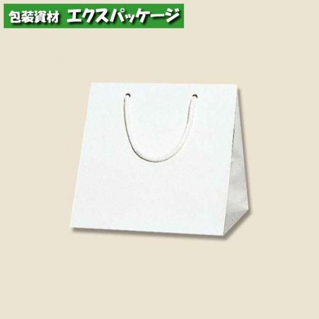 ブライトバッグ C2 シロ 50枚入 #006459600 ケース販売 取り寄せ品 シモジマ