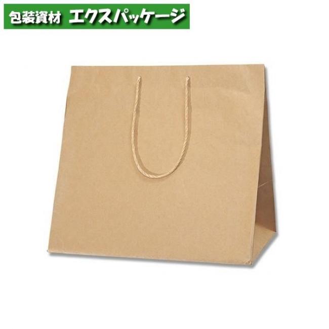 アレンジバッグN L 未晒無地 50枚入 #006441110 ケース販売 取り寄せ品 シモジマ