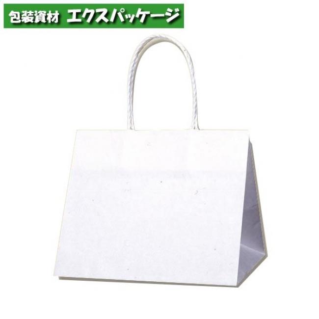 Pスムース 25-19 片艶100g 白無地 300枚入 #003155300 ケース販売 取り寄せ品 シモジマ
