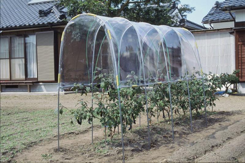 ビニールハウス 雨よけハウス組立セット 間口1.2m×奥行3.6m×高さ2.0m 1うね用 5~6株 埋め込み式 野菜 家庭菜園 法人も個人も送料無料