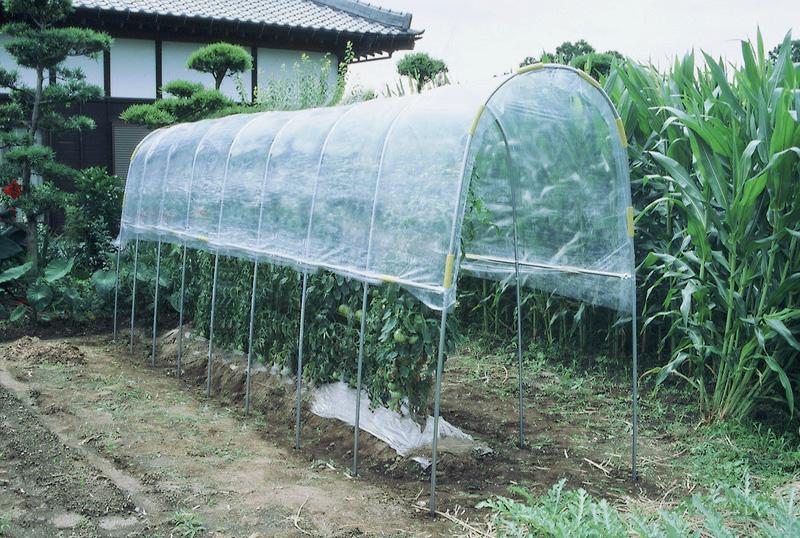ビニールハウス 雨よけハウス組立セット 間口1.2mX奥行7.04mX高さ2.0m 1うね用11~12株 埋め込み式 野菜 家庭菜園 法人も個人も送料無料
