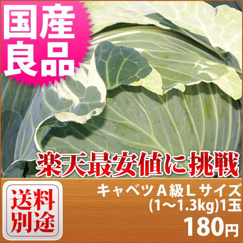 【特別栽培】 キャベツ A級良品 Lサイズ(1~1.3kg)1玉■減農薬減化学肥料栽培