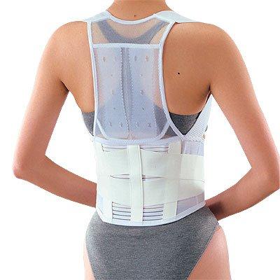 即納 姿勢矯正 肩や腰の疲れを感じる方に… 限定モデル 送料無料 背筋補正コルセット男女兼用