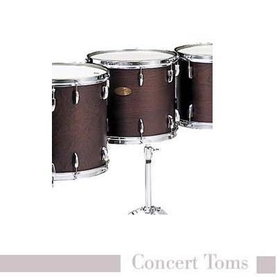 コンサートトムPTA1412D コンサートトム ダブルヘッドシリーズ パール