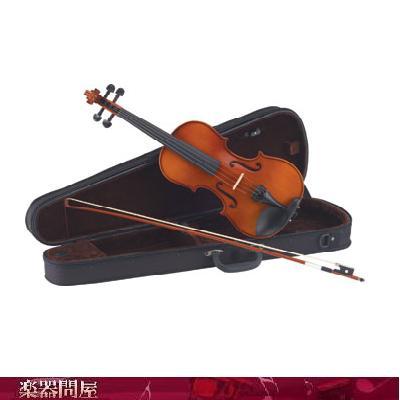 カルロジョルダーノバイオリン VS-1