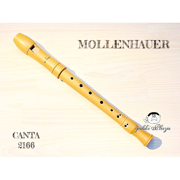 モーレンハウエル・リコーダー 定番機種 カンタ合奏用 ソプラノリコーダー(ジャーマン式運指タイプ) 2166
