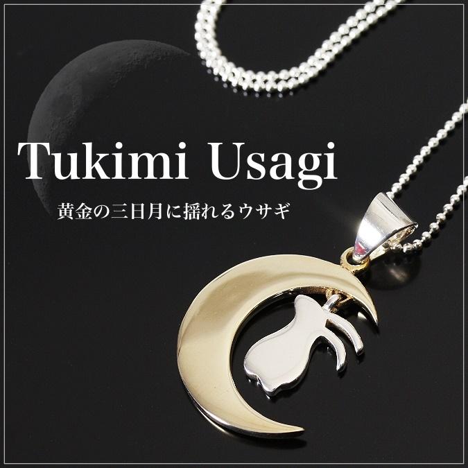 Auc ganesa rakuten global market nagomi design oriental nagomi design oriental vibrations and moon rabbit silver japanese pattern silver silver mozeypictures Images