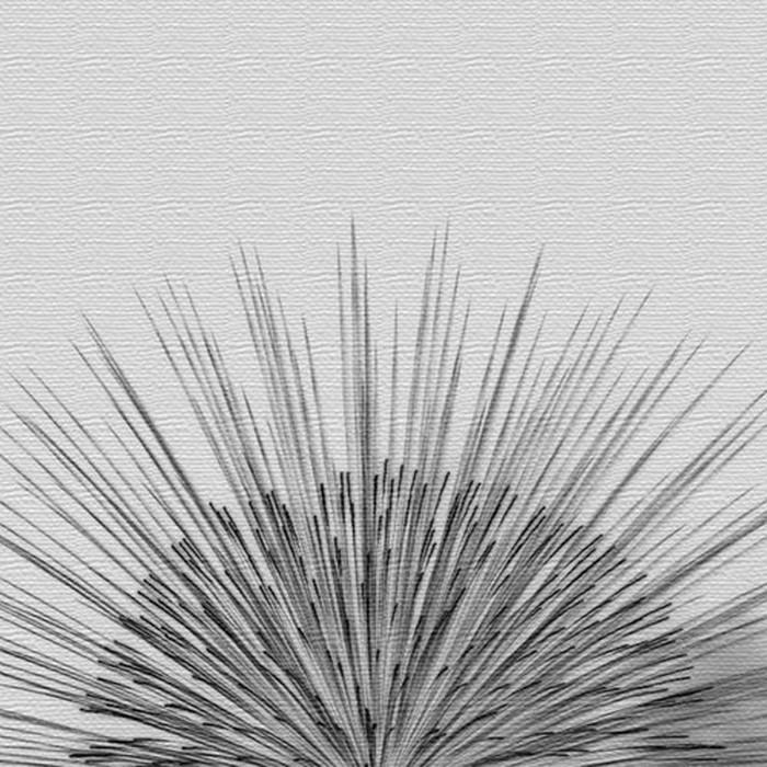 秦義之 ファブリックパネル アートパネル Yoshiyuki Hata XLサイズ 100cm×100cm lib-4122305s5 北欧 送料無料 クーポン プレゼント 通販 NP 後払い 新生活 オススメ %off ジェンコ 北欧 モダン インテリア ナチュラル テイスト 雑貨