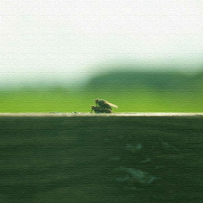 秦義之 ファブリックパネル アートパネル Yoshiyuki Hata XLサイズ 100cm×100cm lib-4122318s5 北欧 送料無料 クーポン プレゼント 通販 NP 後払い 新生活 オススメ %off ジェンコ 北欧 モダン インテリア ナチュラル テイスト 雑貨