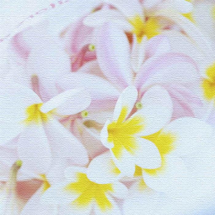うみカメラマン むらいさち ファブリックパネル 花 アートパネル Sachi Murai XLサイズ 100cm×100cm lib-4122319s9 北欧 送料無料 クーポン プレゼント 通販 NP 後払い 新生活 オススメ %off ジェンコ 北欧 モダン インテリア ナチュラル テイスト 雑貨