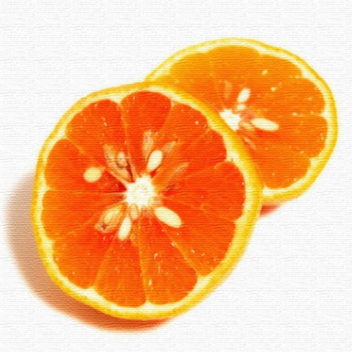 オレンジ インテリアパネル アートパネル VEGETABLE FRUIT XLサイズ 100cm×100cm lib-4122802s4 北欧 送料無料 クーポン プレゼント 通販 NP 後払い 新生活 オススメ %off ジェンコ 北欧 モダン インテリア ナチュラル テイスト 雑貨
