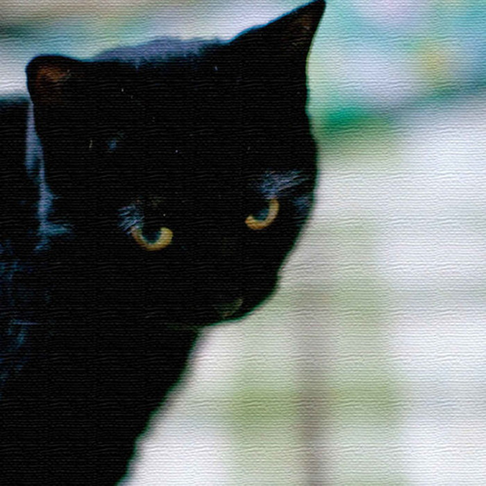 猫 アートパネル ANIMAL XLサイズ 100cm×100cm lib-4122810s4 北欧 送料無料 クーポン プレゼント 通販 NP 後払い 新生活 オススメ %off ジェンコ 北欧 モダン インテリア ナチュラル テイスト 雑貨