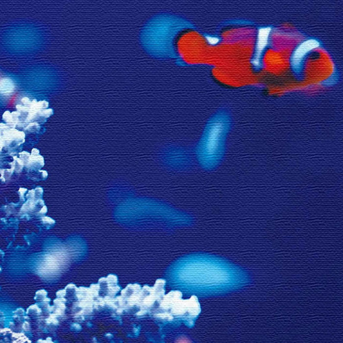 カクレクマノミ アートパネル FISH XLサイズ 100cm×100cm lib-4122812s4 北欧 送料無料 クーポン プレゼント 通販 NP 後払い 新生活 オススメ %off ジェンコ 北欧 モダン インテリア ナチュラル テイスト 雑貨