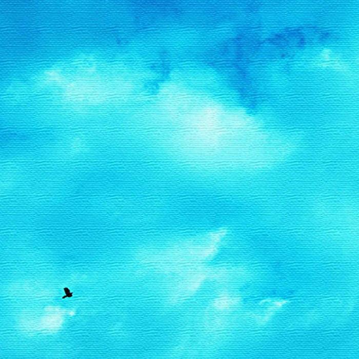 青空 アートパネル PHOTO XLサイズ 100cm×100cm lib-4122829s4 北欧 送料無料 クーポン プレゼント 通販 NP 後払い 新生活 オススメ %off ジェンコ 北欧 モダン インテリア ナチュラル テイスト 雑貨