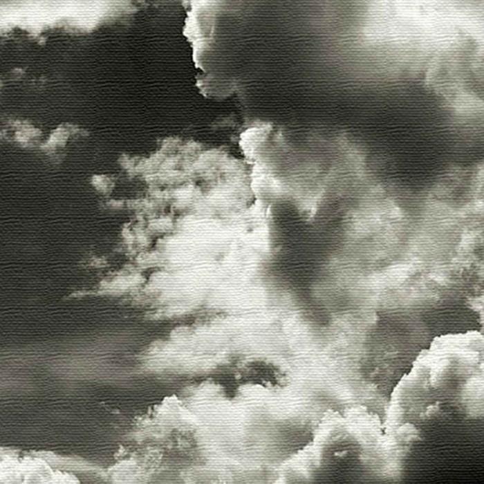月 写真 ファブリックパネル アートパネル PHOTO XLサイズ 100cm×100cm lib-4122855s4 北欧 送料無料 クーポン プレゼント 通販 NP 後払い 新生活 オススメ %off ジェンコ 北欧 モダン インテリア ナチュラル テイスト 雑貨