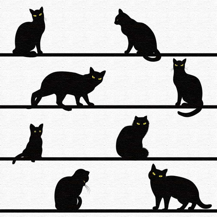 黒猫 アートボード アートパネル アートデリ XLサイズ 100cm×100cm lib-5109086s4送料無料 北欧 モダン 家具 インテリア ナチュラル テイスト 新生活 オススメ おしゃれ 後払い 雑貨